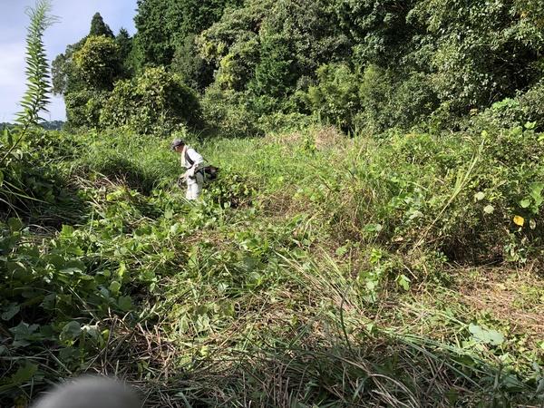 荒れ地の開墾を開始しました!サムネイル